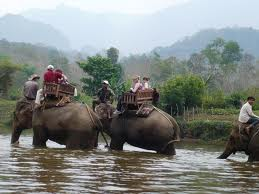 Luang Phrabang - Elephant & Trekking Combination Full Day